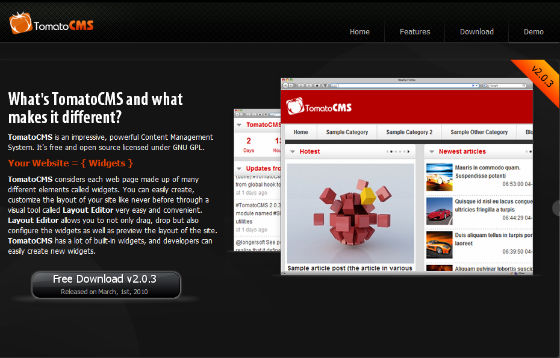 בניית אתרים באמצעות מערכת ניהול תוכן TomatoCMS