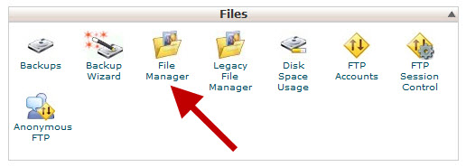 בוחרים עם Filemanager בשרת