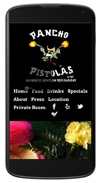 Pistolas Website design responsiive